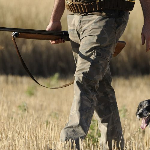 Είδη Κυνηγίου